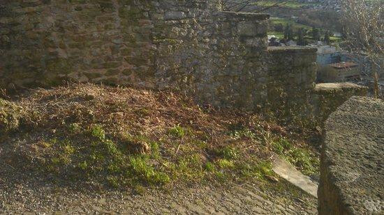 Schloss Lenzburg: Дорога на территории замка/Castle road