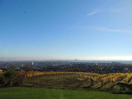 Palace Hostel Schlossherberge: Amazing view