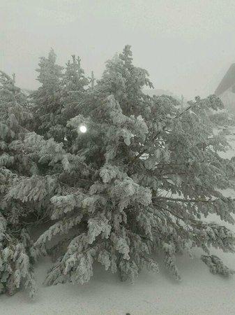 Hostal La Montaña: EN INVIERNO, NIEVE, NIEVE