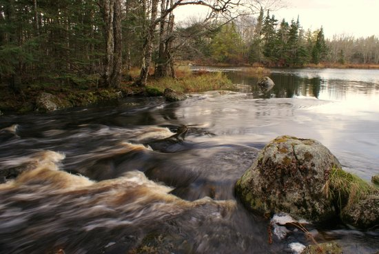 Trout Point Lodge of Nova Scotia : As remote as you can get for NS resorts