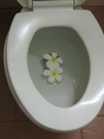 Ruby True Hotel: Flowers in the toilets to welcome you...