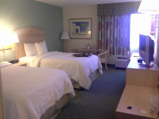 Hampton By Hilton Miami-Coconut Grove/Coral Gables: Room