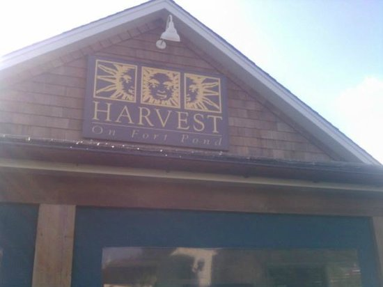 Harvest on Fort Pond: Place is tucked into the lake