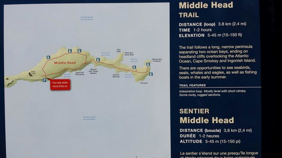 Middle Head Trail: Trailhead map. Located behind keltic lodge.