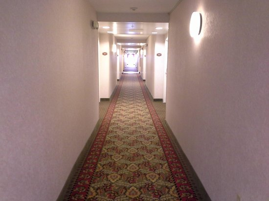 Hampton Inn Jacksonville East Regency Square: hallway