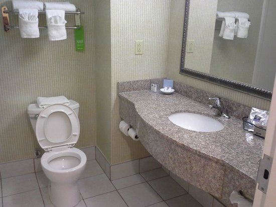 Hampton Inn Jacksonville East Regency Square: bathroom