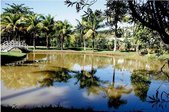 Buzios Summer Park Casas e Suites: Lago