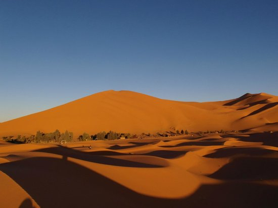 Chez les Habitants : The oasis of Erg Chebbi