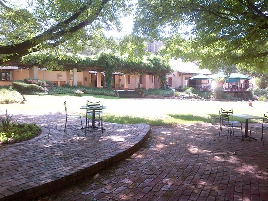Whispering Pines Country Estate : Under the tree