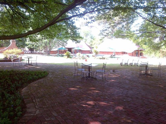 Whispering Pines Country Estate : Under the Big oak tree