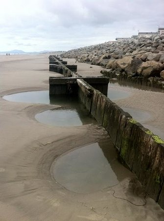 Sunnysands Caravan Park: Rock pools