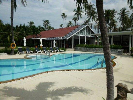 Centra by Centara Coconut Beach Resort Samui : beautiful pool