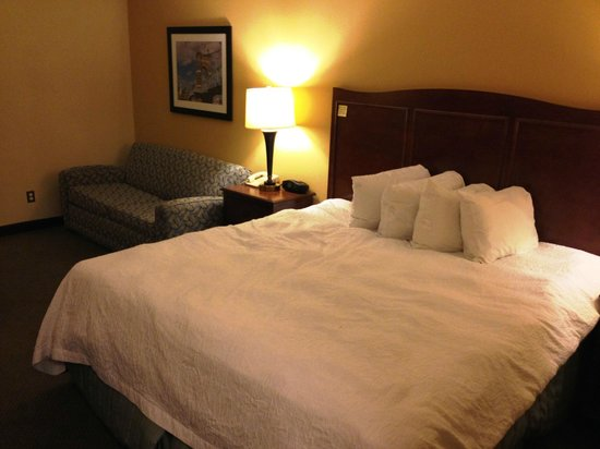 Hampton Inn Cincinnati Riverfront (Downtown Area): Chambre 605