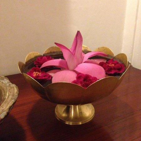 Hotel Ganges View : Lotus flowers