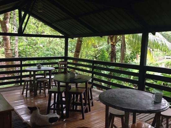 The Kebun: the breaky area