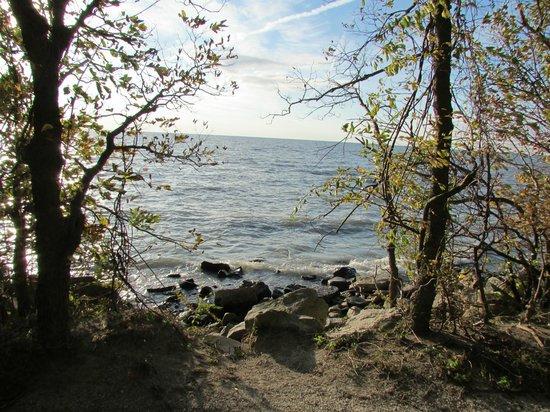 Point Pelee National Park : Lake Erie