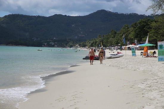 Chaba Samui Resort: chaweng beach