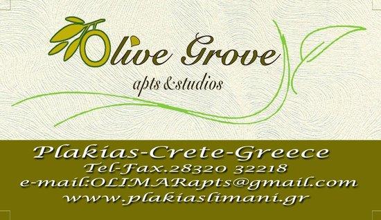 Olive Grove Apartments-Studios: www.plakiaslimani.gr