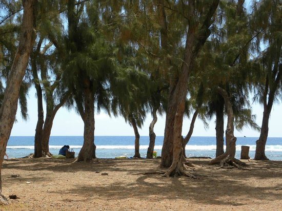 Alamanda Hôtel : plage