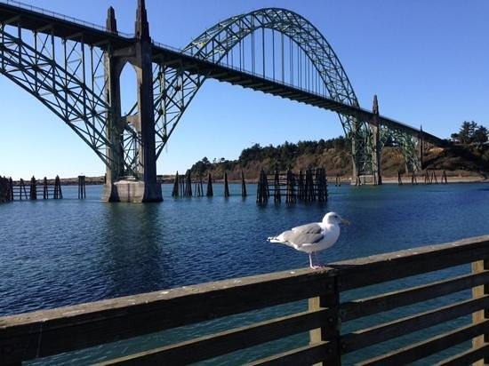 Rogue Ales Bayfront Public House: Newport  Bay Bridge and Yaquina bay
