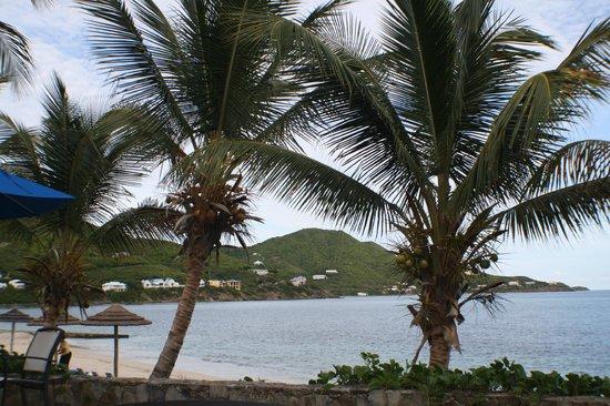 Divi Carina Bay All Inclusive Beach Resort: The beautiful view