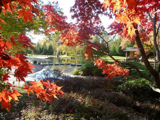 Richmond, VA: Maymont in the fall
