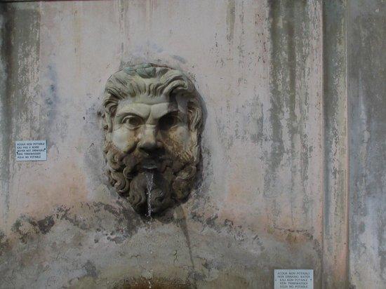 Maximus Tours Vatican Highlights : Vatican museum 3