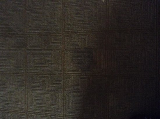 Hyatt Place Secaucus/Meadowlands : Hotel room carpet upon arrival and 5 days later!