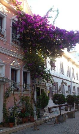 Avicenna Hotel: street viewfrom hotel