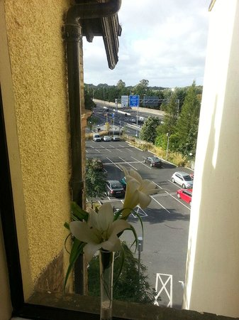 Lucan Spa Hotel: View to parking