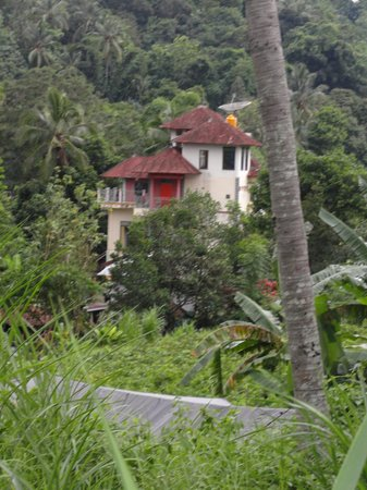 Sudaji Guest House: guest house
