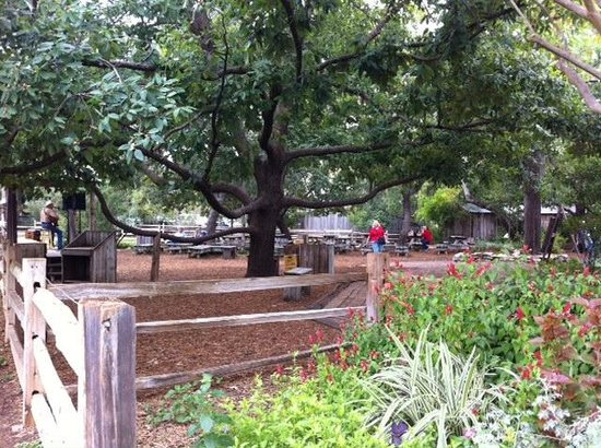 Gristmill: Outdoor space where live music is played.