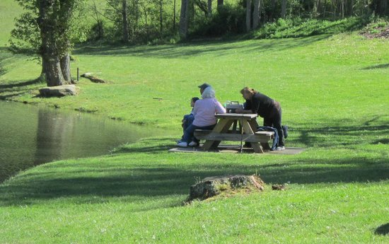 Mill House Lodge : Guests enjoying a family picnic