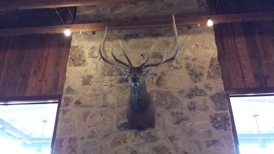 Auslander Restaurant: What a rack! More of these inside.