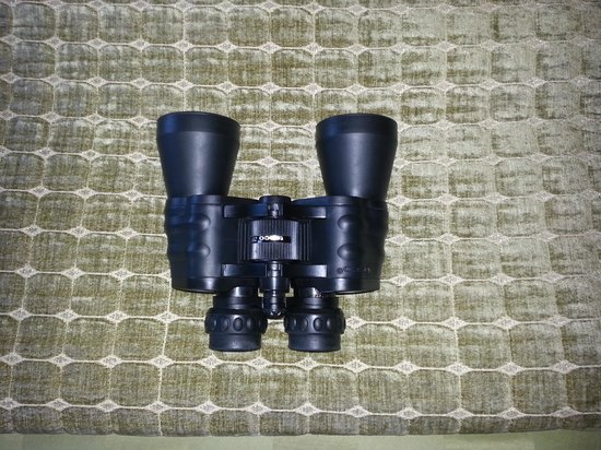 Sanctuary Beach Resort : They gave us binoculars for the room so you could look for the whales