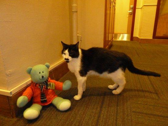Chelsea Pines Inn: Charlie's new Scottish friend Watson
