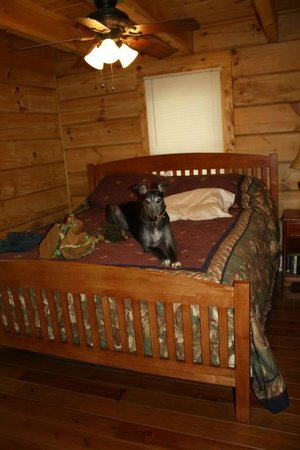 Mountain View Lodge and Cabins: The master bedroom with King Size Bed (greyhound not included!)