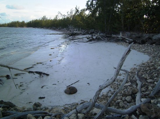 Small Hope Bay Lodge: one of several beaches