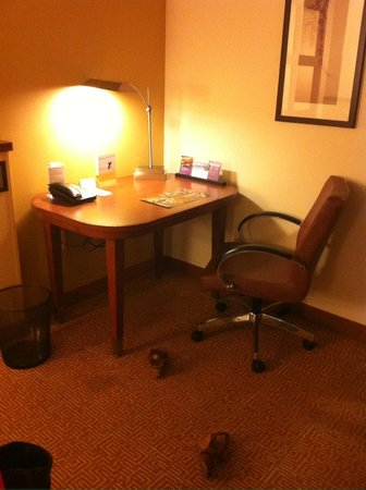 Hyatt Place Sarasota / Bradenton Airport: Desk/work aren in room