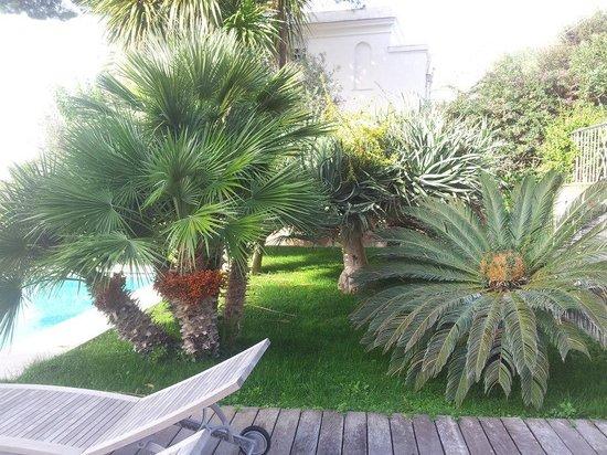 Hotel Canasta : Gardens of the Canasta hotel..