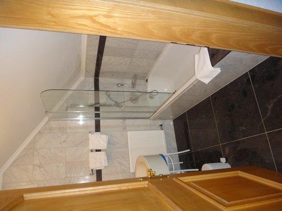Hotel-Pension Bloberger Hof: Teto chuveiro baixo. Mais de 1,80m = banho agachado