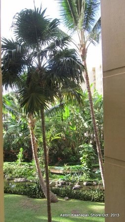 Aston Kaanapali Shores: View from 3rd floor room 337B