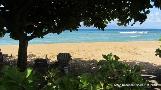 Aston Kaanapali Shores: A great shady spot on the beach in front of hotel.