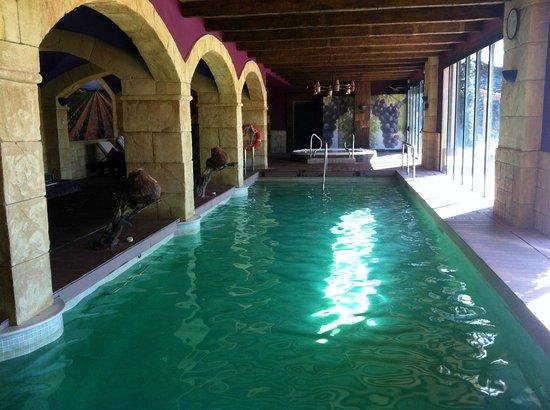 Hotel Peralada Wine Spa & Golf : L'eau pas trop limpide^^