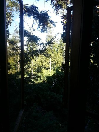 "Mountain Home Inn: Our ""view room"" - says you can see the bay, um, no"