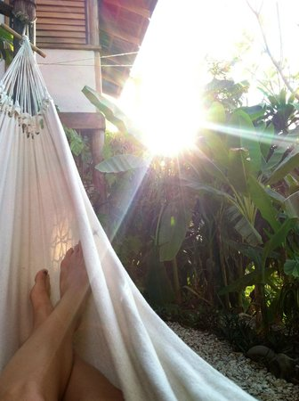 Casa Colina: Hammocks for relaxation