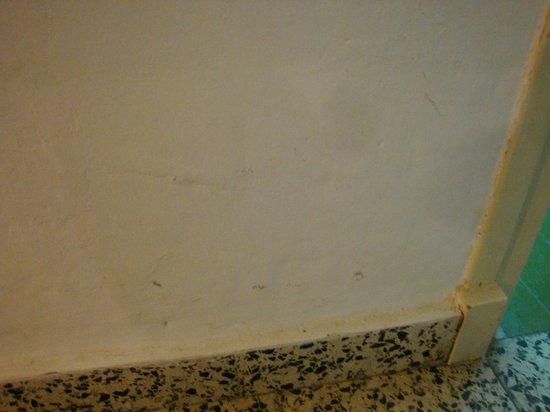 Hostal Paco: Pared 2ª habitación.