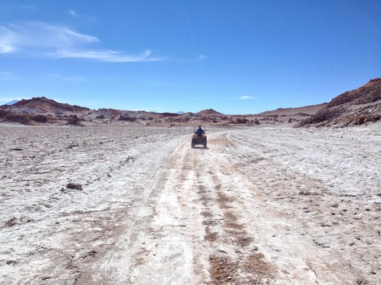 On Safari Atacama : Wow!