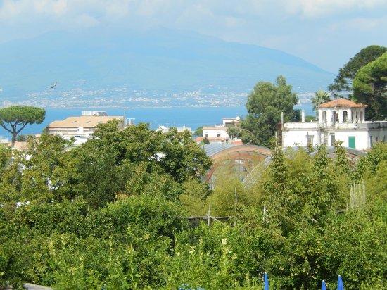 B&B Il Roseto : Bay of Naples view