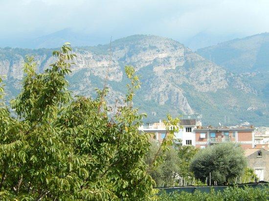 B&B Il Roseto : Balcony view